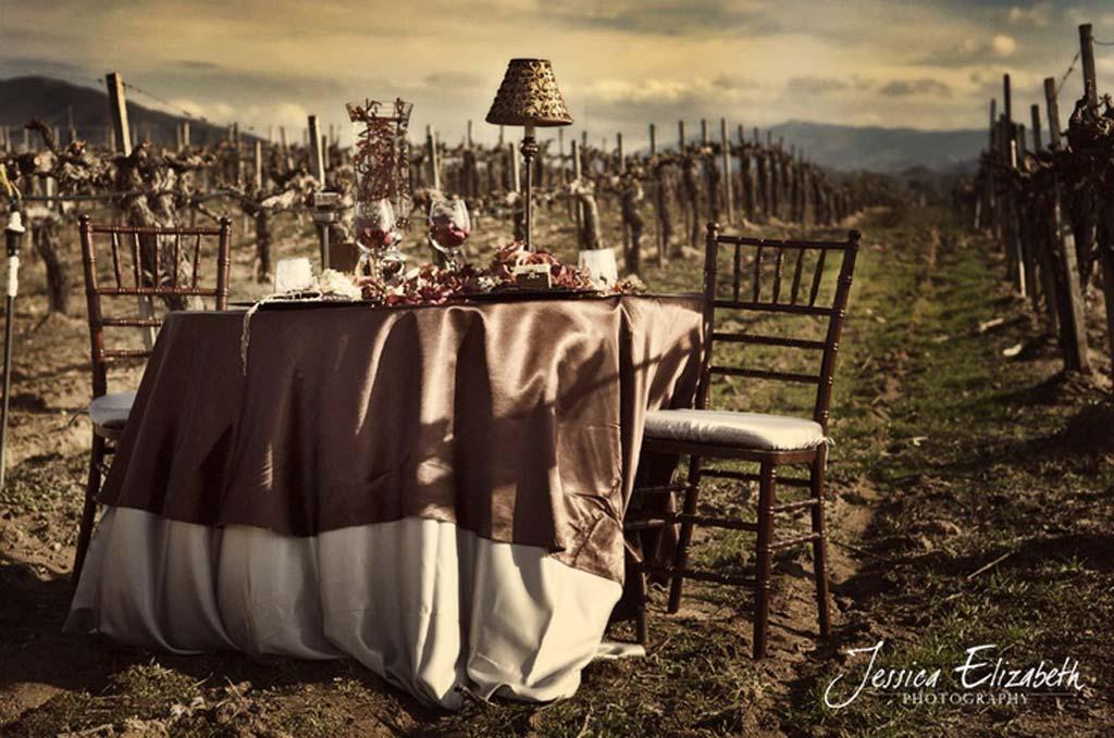 Tavolo degli sposi tra le vigne