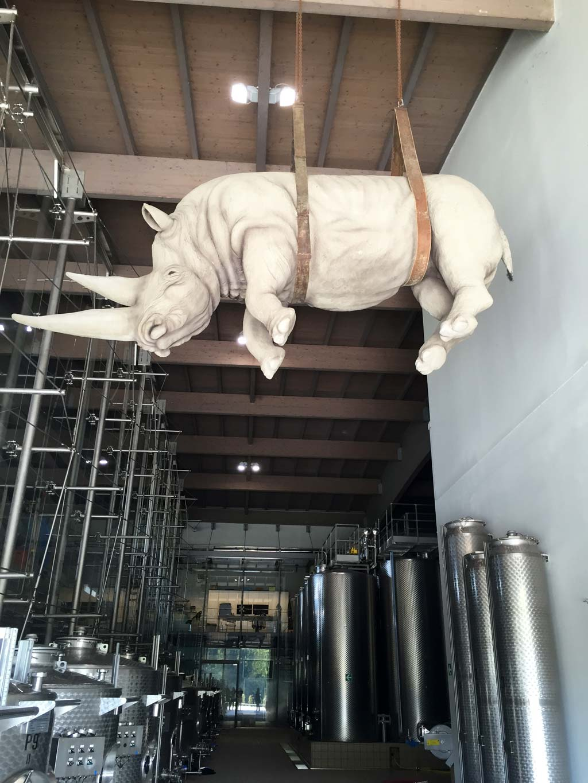 rinoceronte-ca-del-bosco