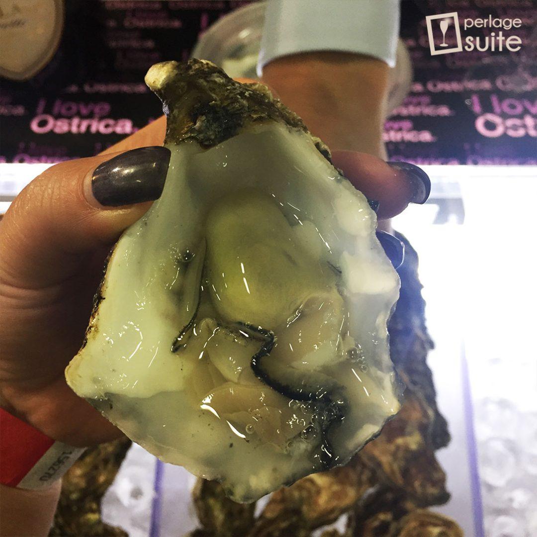 i love ostrica