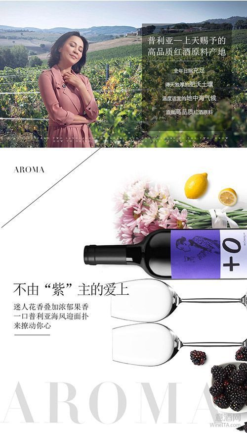 wine marketing carina lau