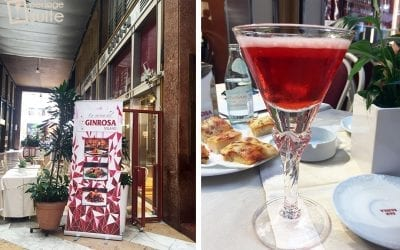 Gin Rosa: storie di donne, successi e passioni nel cuore di Milano