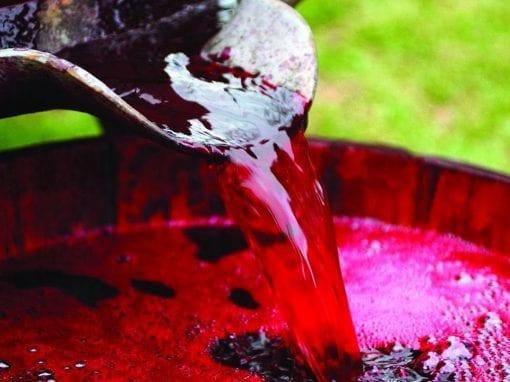 Pratiche di cantina: trattamenti e correzioni del vino