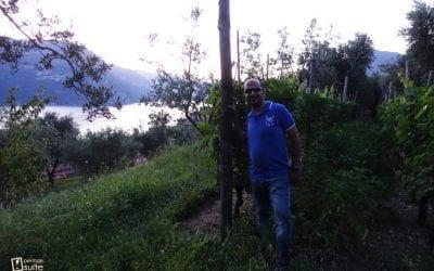 Monte Isola: vini sospesi tra passato e futuro per i fratelli Mazzucchelli