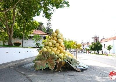 bacalhoa-vinhos-vini-portoghesi-43