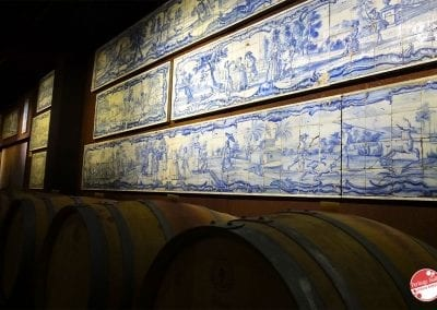 bacalhoa-vini-portoghesi-vinhos-11