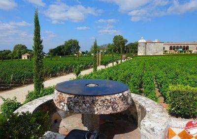 bacalhoa-vini-portoghesi-vinhos-24