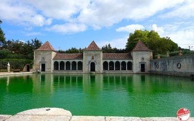 Bacalhôa: vini deliziosi, cantina affascinate, vigneti curati e un palazzo da sogno a due passi da Lisbona
