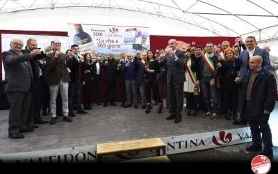 Picchio Rosso 2018: Conosci il vino novello di Valtidone?