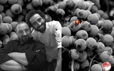 Amarone della Valpolicella: cosa abbinare a questo vino?