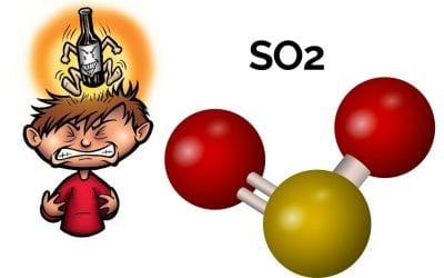 Anidride solforosa: perchè il vino contiene solfiti?