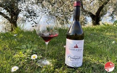 Pinot nero: lasciati sedurre da Casanova a Castello di Spessa