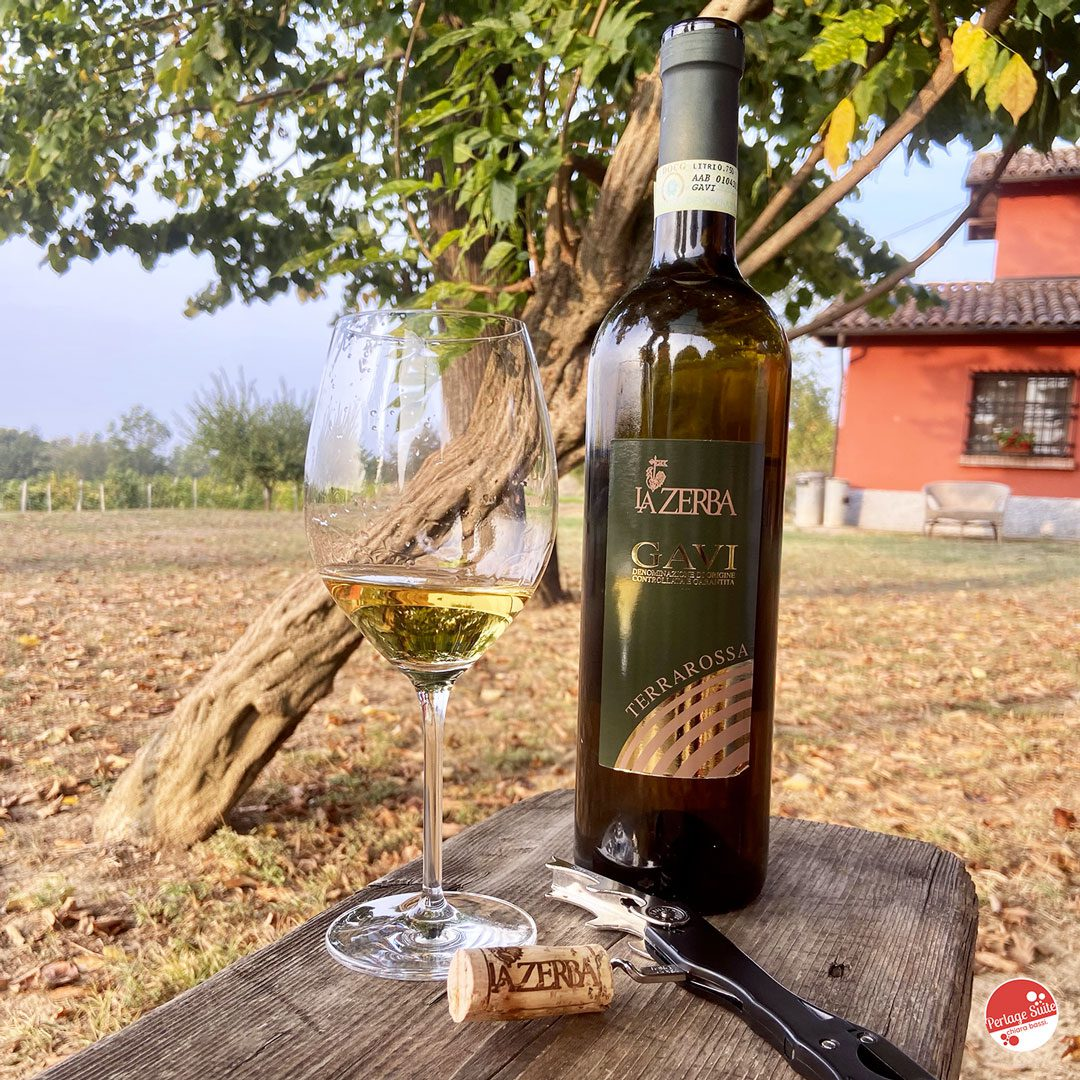vini bianchi piemontesi gavi docg la zerba